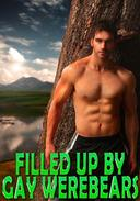 Filled Up By Gay WereBears: Fucked Hard, MMM Erotic Romance, Double-Teamed Hard, Paranormal WereBear Shifter, Menage, Hardcore