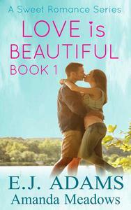 Love is Beautiful Book 1