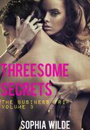 Threesome Secrets: The Business Trip - Volume 3