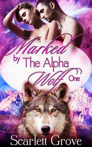 Marked By The Alpha Wolf Book One