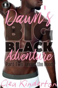 Dawn's Big Black Adventure: Under the Hood
