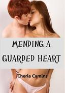 Mending A Guarded Heart