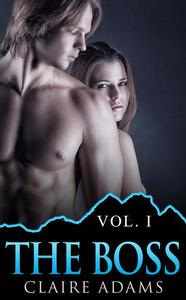 The Boss (The Boss Romance Series - Book #1)