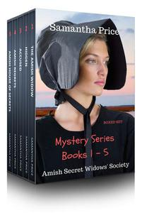 Amish Mysteries Boxed Set 1 - 5