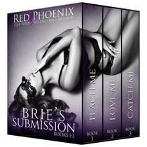 Brie's Submission 1-3