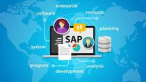 SAP Explained for Layman
