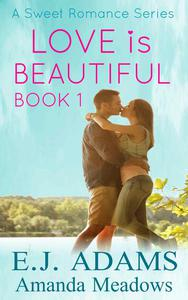 Love is Beautiful Book 1