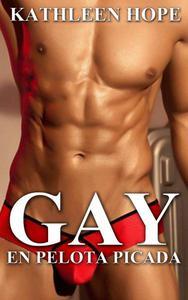 Gay: En pelota picada