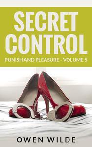 Secret Control (Punish and Pleasure - Volume 5)