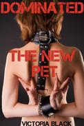 Dominated: The New Pet (Rough Reluctant BDSM Domination)