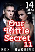 Our Little Secret 11 - 14 Taboo Tales (Brother Sister Stepbrother Stepsister Taboo Pseudo Incest Family Virgin Creampie Pregnant Forced Pregnancy Breeding)