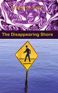 The Disappearing Shore