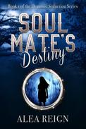 Soul Mate's Destiny