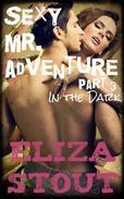 In the Dark: Sexy Mr. Adventure, Part 3 (An Erotic BDSM Romance)