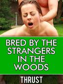Bred by The Strangers in The Woods (Multiple Partner, Teenage Breeding Erotica)