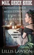 Orphaned Bride Meets Cowboy Living In A Tiny Cabin