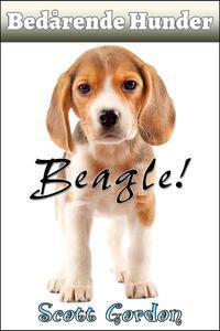 Bedårende Hunder: Beagle