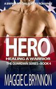 Hero: Healing a Warrior, Book 4