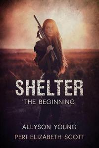 Shelter  the beginning