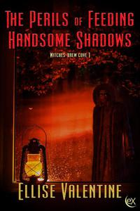 The Perils of Feeding Handsome Shadows