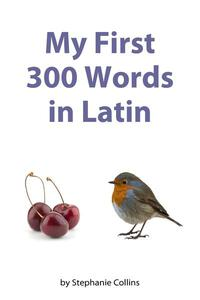 My First 300 Words in Latin