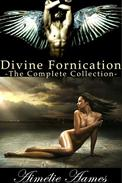 The Complete Collection of Divine Fornication (A Paranormal Story of Angels, Vampires and Werewolves)