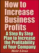 How to Increase Business Profits: A Step By Step Plan to Increase the Profitability of Your Company