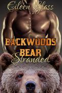 Backwoods Bear: Stranded