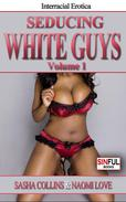 Interracial Sex Stories Collection: Seducing White Guys Vol.1 (BWWM)
