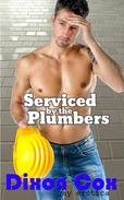 Serviced By The Plumbers