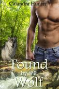 Found by the Wolf