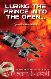 Operation Retribution: Luring the Prince into the Open