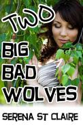Two Big Bad Wolves (Werewolf Paranormal Threesome Erotica)