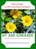 Abe's Guide to The Lanceleaf Coreopsis