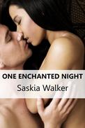 One Enchanted Night