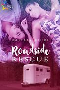 Roadside Rescue