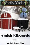 Amish Blizzards: Volume Six: Amish Love Birds