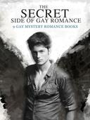 The Secret Side of Gay Romance: 9 Gay Mystery Romance eBooks in einem Band!