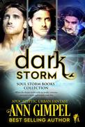 Dark Storm, Soul Storm Books Collection