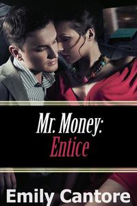 Entice: Mr. Money