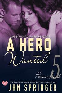 A Hero Wanted