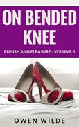 On Bended Knee (Punish and Pleasure - Volume 3)
