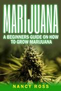 Marijuana: A Beginners Guide On How To Grow Marijuana