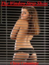 The Window Strip Show