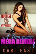 A Transgender Mega Bundle 3
