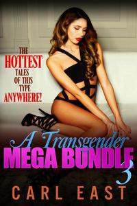 A Transgender Mega Bundle 3