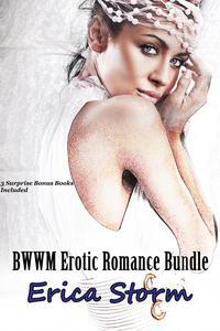 BWWM Romance Bundle
