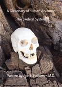 A Dictionary of Human Anatomy: Skeletal System