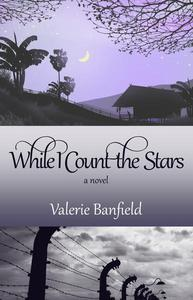 While I Count the Stars: A Novel