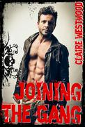 Joining the Gang: A MMF Motorcycle Club erotic tale